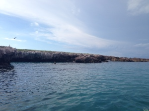 Territorio Pato Bobo